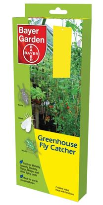 Picture of Bayer Greenhouse Fly Catcher 7 Panel