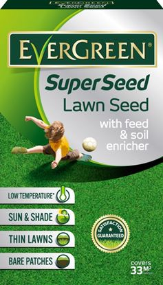 Picture of EverGreen Super Seed 66m2 2kg