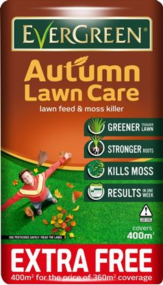 Picture of EverGreen Autumn Lawn Care 360m2 10 Extra