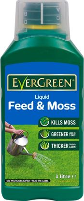 Picture of EverGreen Liquid Feed  Moss 1L