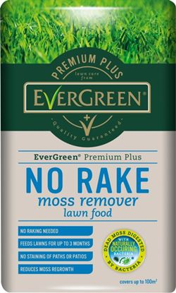 Picture of EverGreen No Rake Moss Remover 200m