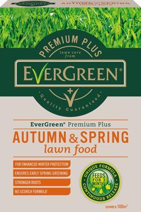 Picture of EverGreen Premium  Autumn  Spring 400m