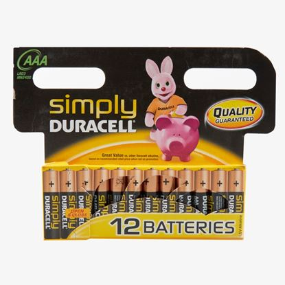 Picture of Duracell Simply Batteries 12 Pack AAA