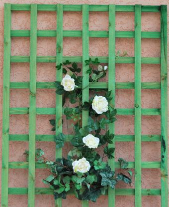 Picture of Apollo Rigid Square Trellis 1.8 x 0.9m Green