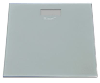 Picture of Blue Canyon S Series Digital Bathroom Scale Slate