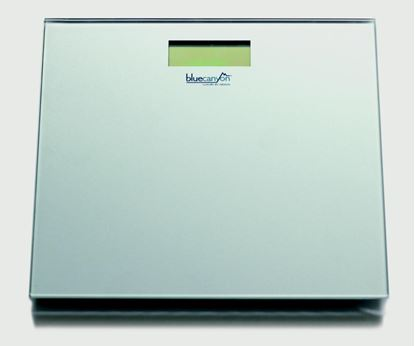 Picture of Blue Canyon S Series Digital Bathroom Scales Silver