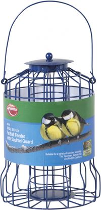 Picture of Ambassador Wild Birds Fat Ball Feeder with Squirrel Guard
