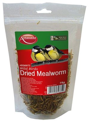 Picture of Ambassador Mealworms 75g