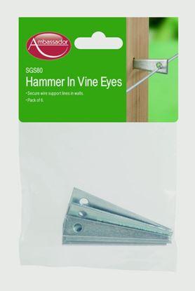 Picture of Ambassador Hammer In Vine Eyes