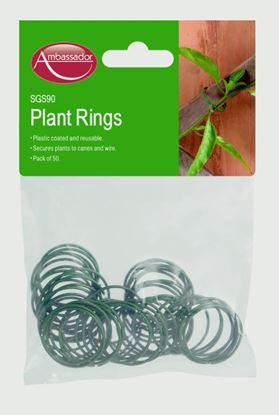 Picture of Ambassador Coated Plant Rings