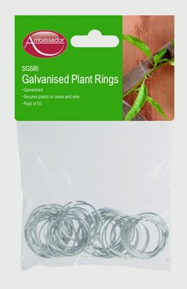 Picture of Ambassador Galvanised Plant Rings