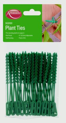 Picture of Ambassador Adjustable Plant Ties 33cm
