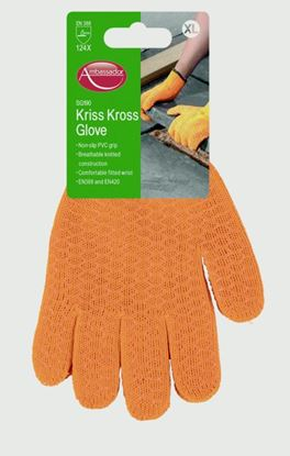Picture of Ambassador Kriss Kross Glove