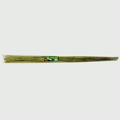 Picture of Garden Accessories 120cm Bamboo Canes Pack 20