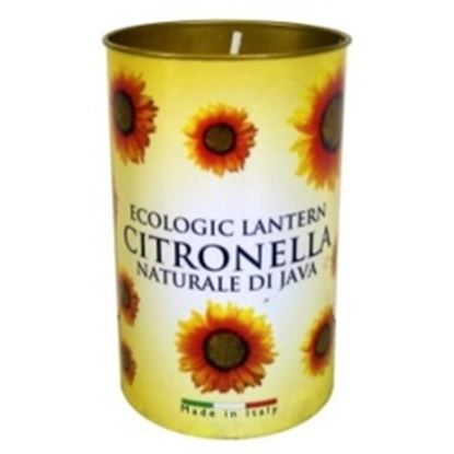 Picture of Prices Candles Citronella Fragrant Lantern