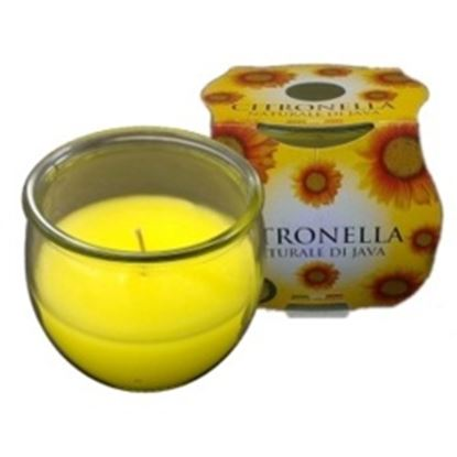 Picture of Prices Candles Citronella Jar In Cluster Pack