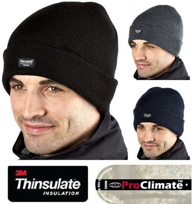 Picture of Fordville Mens Full Thinsulate Beanie