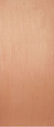 Picture of Jeld Wen External Plywood Faced Fire Door 30 1981 x 762mm 66 x 26