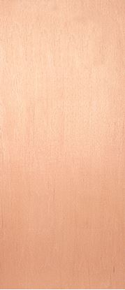 Picture of Jeld Wen External Plywood Faced Fire Door 33 1981 x 838mm 66 x 29