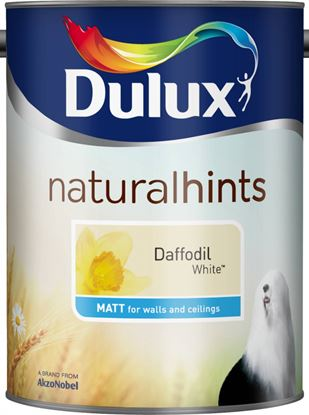 Picture of Dulux Natural Hints Matt 5L Daffodil White