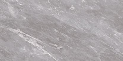Picture of BCT HD Harmony Wall Tile Grey 248x498