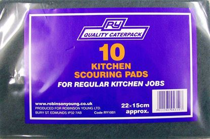 Picture of Caterpack 10 Green Kitchen Scouring Pads 23x15 Green