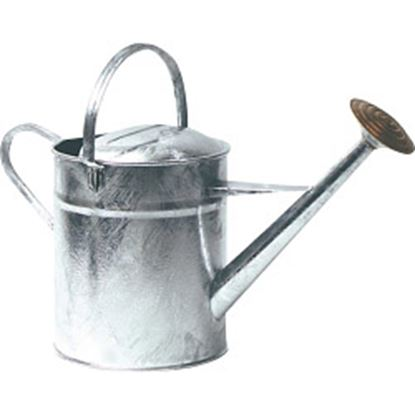 Picture of Ambassador Galvanised Watering Can 2 Gallon