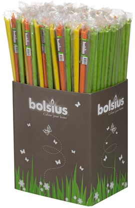 Picture of Bolsius 18 Garden Torch Assorted